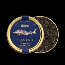 Kaviar vom Sibirischen Stör