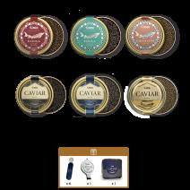 SET: Kaviarverkostung in einer Lemberg Kühltasche