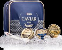 3 Kaviar Delikatessen in einer Lemberg Kühltasche, 3 x 30 g