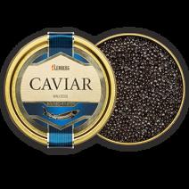 Kaviar vom Sibirischen Stör, Aquakultur, 250g