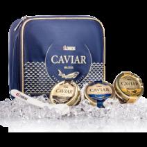 3 Störkaviar-Gläser je 30g in einer Kühltasche Lemberg